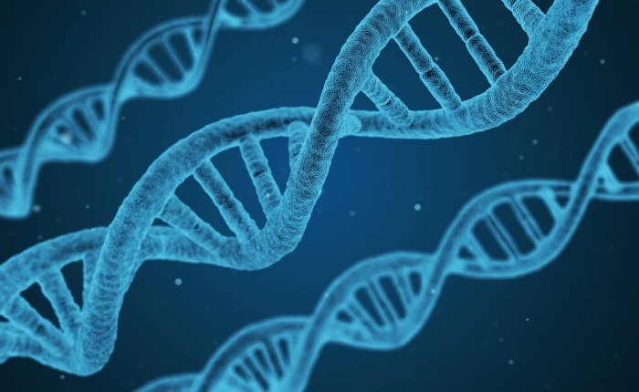 Is DNA Based Healthcare Worth the Risk?